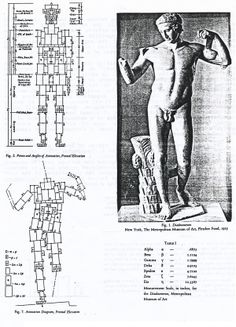 Polyclites' Canon of Proportions