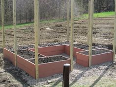 Critter-proof raised bed garden.