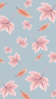 We're SO excited to share our totally free, cute Fall phone wallpaper designs created in partnership between Love and Specs & artist Rhian Awni! These cute & simple watercolor backgrounds for your iPhone, Android & more were created in pretty pastel Fall Iphone Wallpaper Herbst, Phone Wallpaper Design, Free Phone Wallpaper, Aesthetic Iphone Wallpaper, Designer Wallpaper, Wallpaper Designs, Pattern Wallpaper Iphone, Phone Wallpaper Pastel, Aesthetic Wallpapers