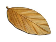 Hoja de Aguacate esculpida en madera de guanacaste o machiche.