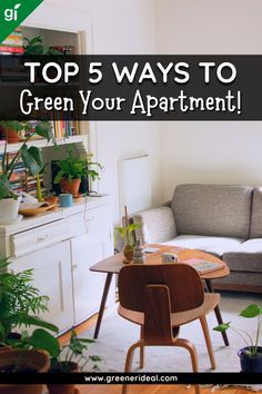 480 Green Living Tips Ideas In 2021
