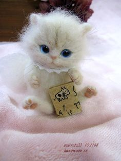 Cute! Needle felted kitten by papiroto33 on Yahoo Auctions Japan