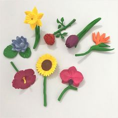 The Flowers - Toob turn your bedroom into a spring meadow with a rose, tulip, hibiscus, bird of paradise, daffodil, sunflower, lotus, and an orchid. Daffodils, Tulips, Montessori Materials, Kids House, Botany, Hibiscus, Orchids, Bird, Rose