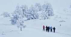 Domaine du Chioula - Ski nordique Ariège - Midi-Pyrénées
