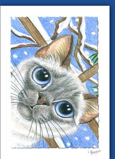 Winter Kitty - Set of 3 - Big Eye Lilac Siamese Cat  Notecards