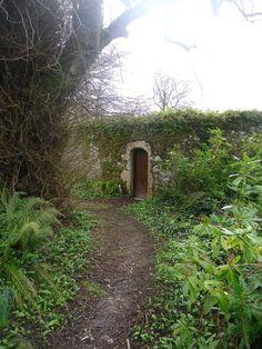 irish door to...