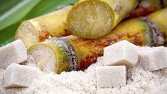 The Not-So-Sweet History of Sugar Part I-John Douillard Ayurveda, History Of Sugar, Voyage Reunion, Healthy Cooking, Healthy Eating, Raw Food Recipes, Healthy Recipes, Sugar Beet, Processed Sugar
