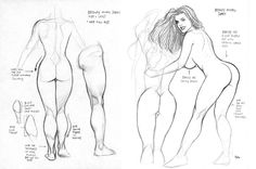 Frank Cho ✤ || CHARACTER DESIGN REFERENCES | 解剖 • علم التشريح • анатомия • 解剖学 • anatómia • एनाटॉमी • ανατομία • 해부 • Find more at https://www.facebook.com/CharacterDesignReferences & http://www.pinterest.com/characterdesigh if you're looking for: #anatomy #anatomie #anatomia #anatomía #anatomya #anatomija #anatoomia #anatomi #anatomija || ✤