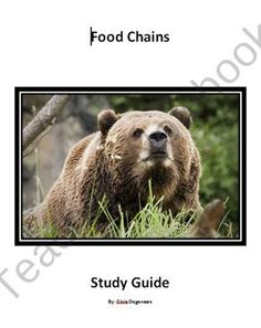 FREE Ecosystems and Food Chain Study Guide product from Teaching Science Well - K-12 Science Resources on TeachersNotebook.com
