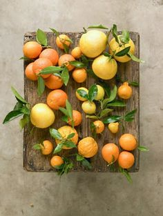Colour citrus