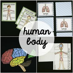 Make it fun for kids to learnabout fivehuman body systems: circulatory, digestive, muscular, nervous and skeletal.  The Human Body Activity Pack includes information-packed posters, engaging layer books, science centers and human body craftivities. The easy to differentiate pack is perfect for kids from preschool through second grade. Inside You'll Find --> Human Body Systems Posters (circulatory, digestive, muscular, nervous, skeletal, and a bonus brain poster)  --> Body Systems Layer…