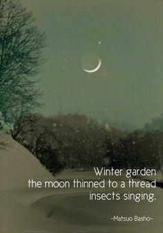 (Matsuo Basho) original image from amazingplac terracemuse: Winter garden.(Matsuo Basho) original image from … Japanese Haiku, Buddhist Wisdom, Albert Camus, Word Porn, Original Image, Beautiful Words, Life Quotes, The Originals, Wings
