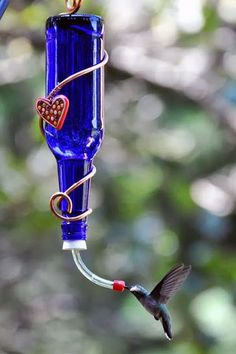 How to make a D.I.Y. hummingbird feeder | Recycled wine bottle ideas for the backyard landscape | Bottle crafts for the garden.