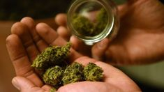Vermont just legalized marijuana. Here's why that's so important.