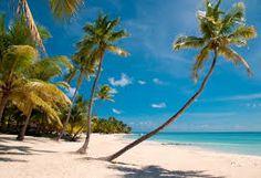Afbeeldingsresultaat voor vakantie strand