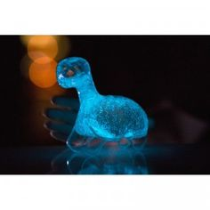 Dino Pet is a clear plastic dinosaur figure that houses living organisms called dinoflagellates that come from the ocean.