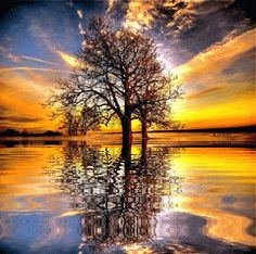 Landscape, Animated Gif, Animated Gifs, Animation. Water Reflections, Animated Graphics, Landscapes, Beautiful Landscape, Animated Landscapes, Keefers Ph...