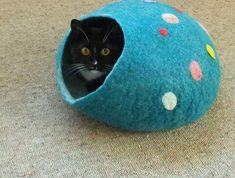 Cat Cave Pure Wool from South Island New Zealand choose the size and colour