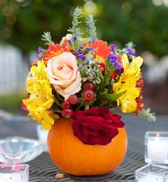 Halloween and Thanksgiving are the highlights of Fall, so making a centerpiece with the star produce of the season is the perfect opportunity to brighten up your table!Whether you're serving…