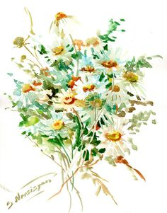 Chamomiles, Original watercolor painting, 14 X 11 in, watercolor flowers, wildflowers, herbs, white floral art