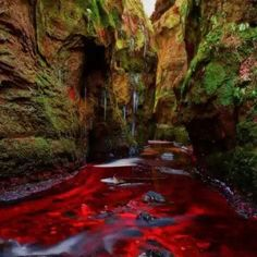 """Blood River"" Devil's Pulpit, Gartness, Scotland"