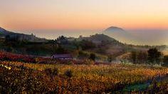 Colourful #sunset #collieuganei