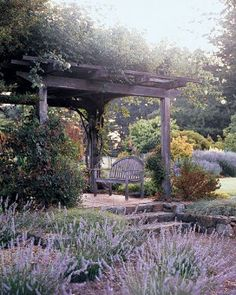 """""""Madame Alfred Carriere"""" roses grow on the arbor near the lavender garden. Outdoor Rooms, Outdoor Gardens, Modern Gardens, Small Gardens, Outdoor Ideas, Garden Structures, Outdoor Structures, Dream Garden, Home And Garden"""