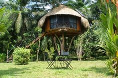 7 best and affordable Sri Lanka Airbnbs - Hikkaduwa Best Honeymoon, Honeymoon Destinations, Romantic Destinations, Romantic Vacations, Romantic Getaway, Hotel Sri Lanka, Sri Lanka Accommodation, Sri Lanka Holidays, Dubai