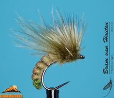 Spent hair wing Caddis