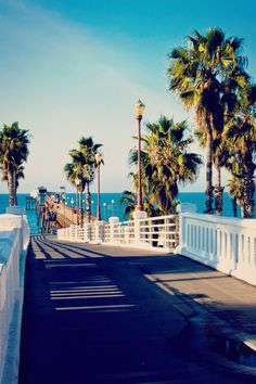 California Palm trees,beach and piers Oceanside California, California Dreamin', Oceanside Pier, Summer Vibes, Summer Nights, Oh The Places You'll Go, Places To Visit, State Parks, Lac Tahoe
