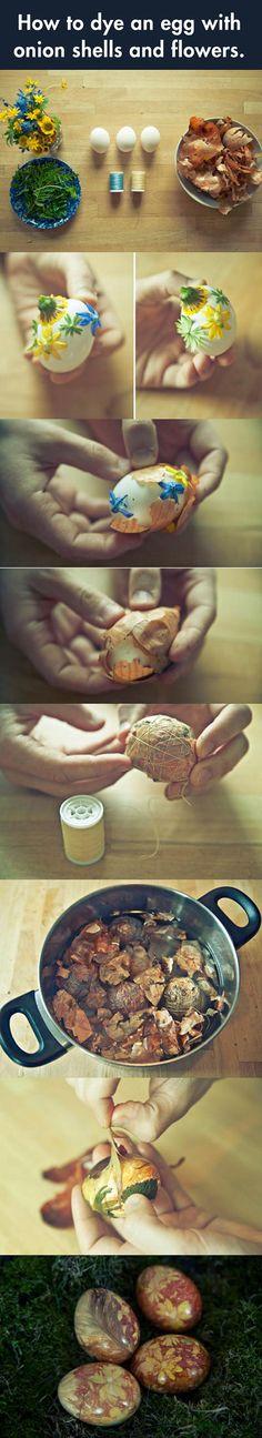 Prepare the quail eggs...