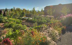 Dolores' Veggie Garden, Cakebread Cellars, Napa Valley, California