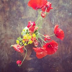 Wild flowers On the table x via Flower Artists, Flower Photography, Wild Nature, Green Plants, Make You Smile, Wild Flowers, Poppy, Wedding Flowers, Make It Yourself