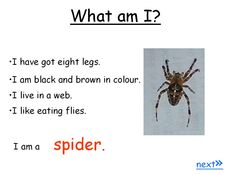 What am I? - Use this slideshow to test knowledge of minibeasts.