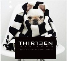 13thirteen New Born shop minimal for women