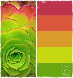 love this fresh, bright combo: magenta, coral, tangerine, pea green & grass green