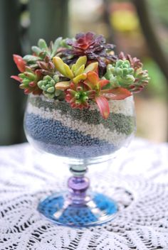 Colorful succulent ice cream sweetstuff-s-succulents Succulent Gardening, Succulent Terrarium, Planting Succulents, Container Gardening, Terrarium Ideas, Succulent Plants, Colorful Succulents, Succulents In Containers, Miniature Plants