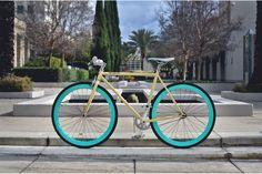 Fixie Pure Fix The X-Ray - Beasty Bike