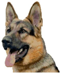 German Shepherd Dog Portrait Counted Cross Stitch Pattern Boston Needleworks http://www.amazon.com/dp/B00FOWW9XA/ref=cm_sw_r_pi_dp_KjVvub0W125RW