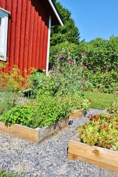 Herbs-pallet rim Allotment, Herbs, Plants, Garden, Outdoor, Outdoor Structures