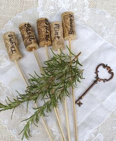 Cork and skewer sticks used as plant markers