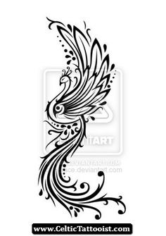 Celtic Phoenix Tattoos Designs 01