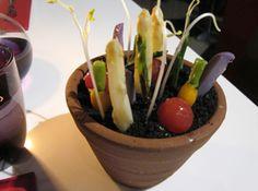 Maceta de vegetales sobre tierra de tubérculos