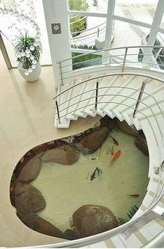 koi pond under the staircase