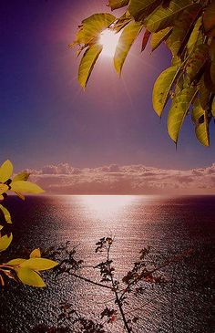 All Nature, Amazing Nature, Beautiful World, Beautiful Places, Beautiful Scenery, Photos Voyages, Beautiful Sunrise, Belle Photo, Beautiful Landscapes