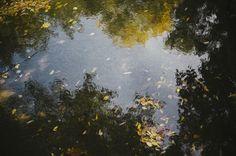bodies-of-water-wilderness-survival