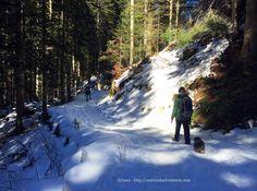 Passeggiata rilassante sulla neve in montagna – rifugio Pian delle Gorre Piemonte