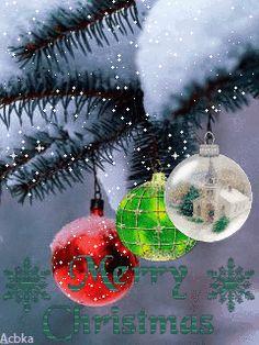 Christmas Tree Gif, Xmas Gif, Christmas World, Merry Christmas Wishes, Christmas Pictures, Christmas Greetings, Winter Christmas, Christmas Themes, Vintage Christmas