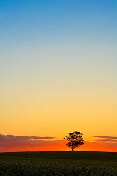 Barossa Sunset by Pieter Pretorius / 500px