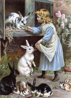 Little Playmates - A Child With Rabbits, by Ernest Nister